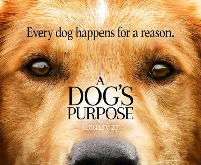 A Dogs Purpose Movie Trailer 2017