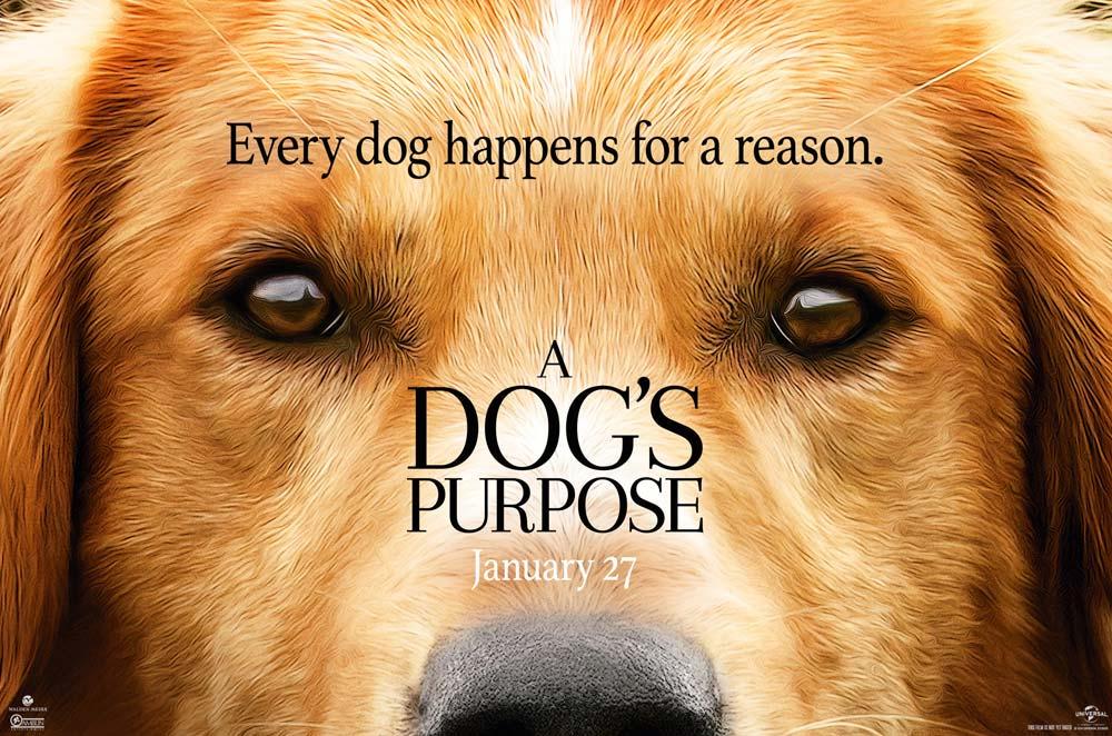 A Dog S Purpose 2017 Trailer Trailer List