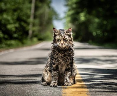 Pet Sematary Movie Trailer 2019