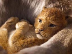 The Lion King Movie Trailer 2019